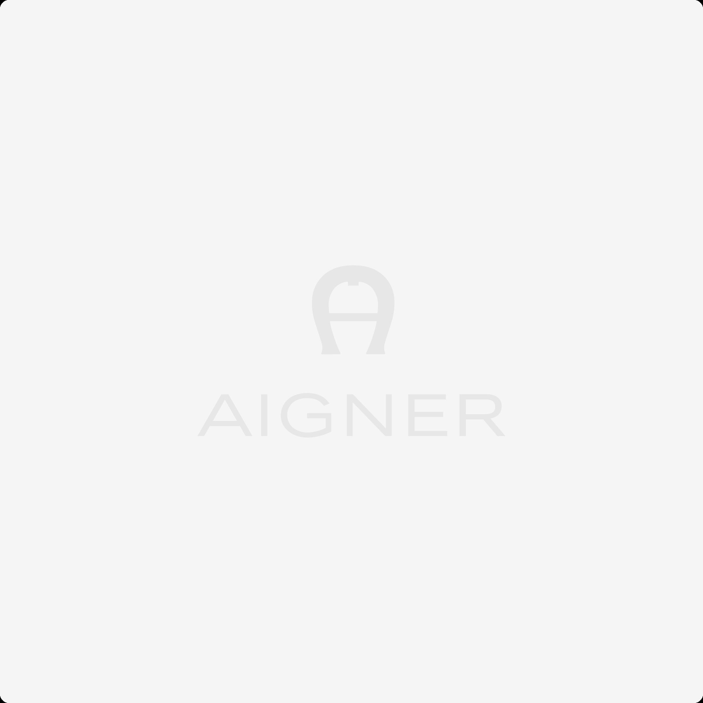 BASICS Bill and card case